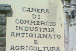 DIRITTO ANNUALE CCIAA: ANNO 2014