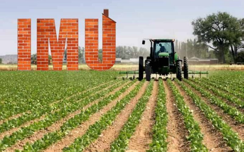 Imu sui terreni: Decreto Legge