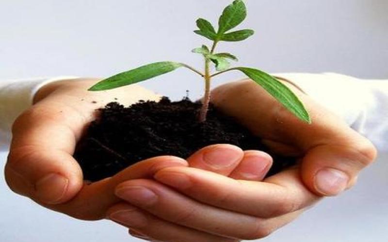 PATENTINO FITOSANITARIO Abilitazione per l'acquisto, il trasporto, la detenzione e l'uso dei prodotti fitosanitari