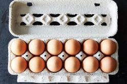 FIPRONIL: cos'è, come è finito nelle uova e quali conseguenze ha per la salute