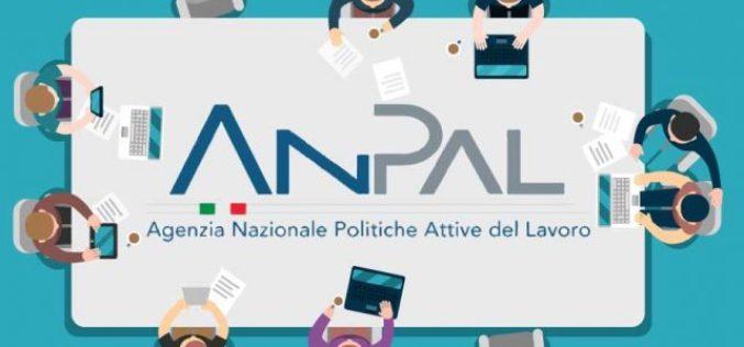 """PROROGA INCENTIVO ASSUNZIONI GIOVANI """"NEET"""" PER IL 2019"""