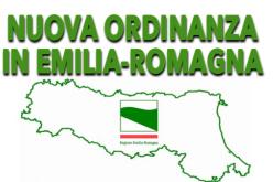 Emilia Romagna, nuova ordinanza: negozi aperti la domenica. Chiusi i centri commerciali